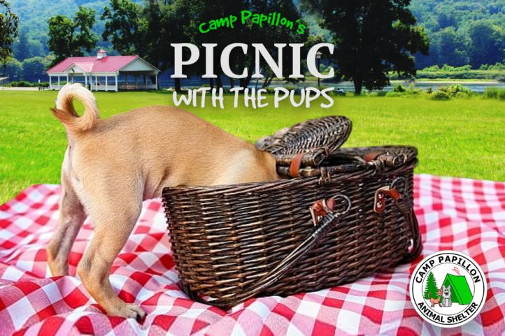 Picnic with Pups
