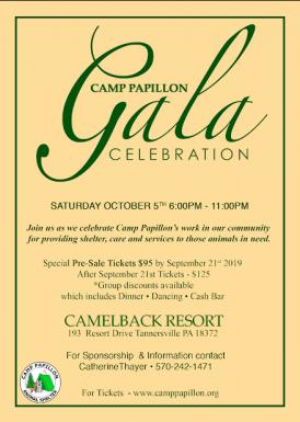 Camp Papillon Celebration Gala
