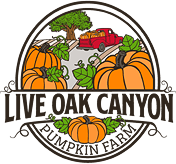 Live Oak Canyon Pumpkin Patch logo