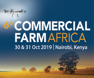 6th Commercial Farm Africa