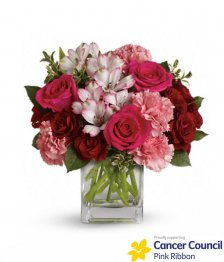 Pink Blush CCA
