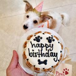 Gracie Anniversary Cake