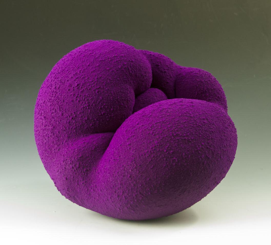 Purple Toroid by Maxwell Mustardo