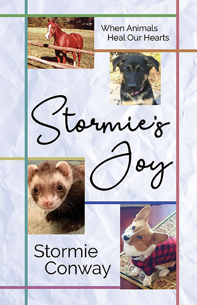 Stormie's Joy by Stormie Conway