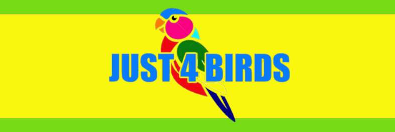 Just4BirdsTampa.com