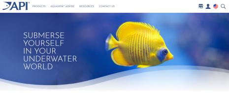 API Brand New Website