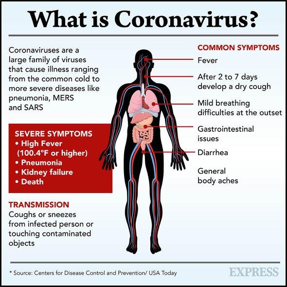 Coronavirus 2367494