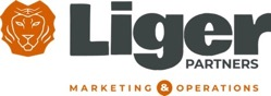 Liger Partners offers virtual marketing help
