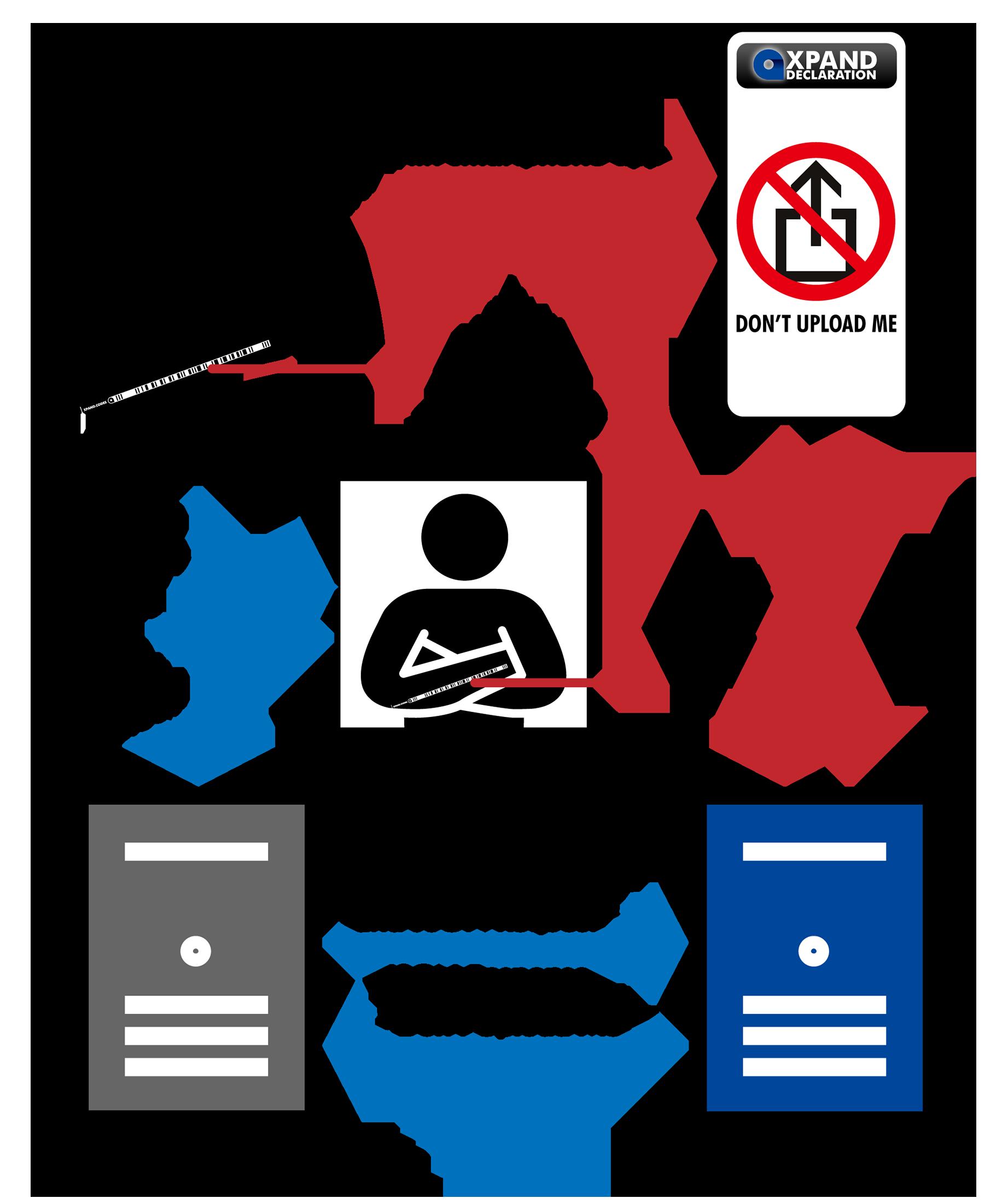Service - XPAND Declaration