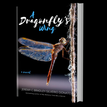 A Dragonfly's Wing