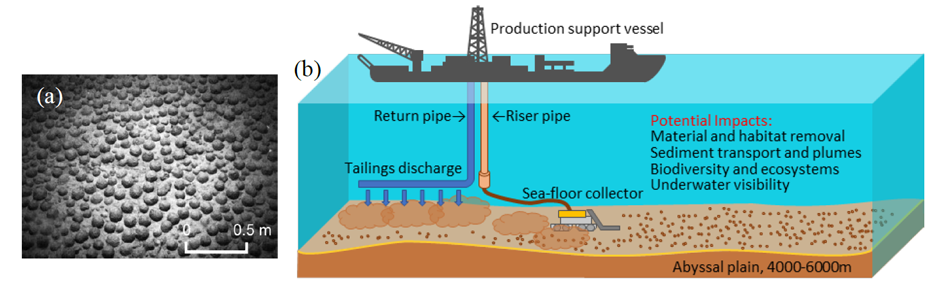 Deep See Mining Impacts