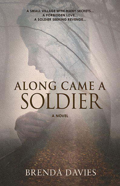 Along Came a Soldier by Brenda Davies