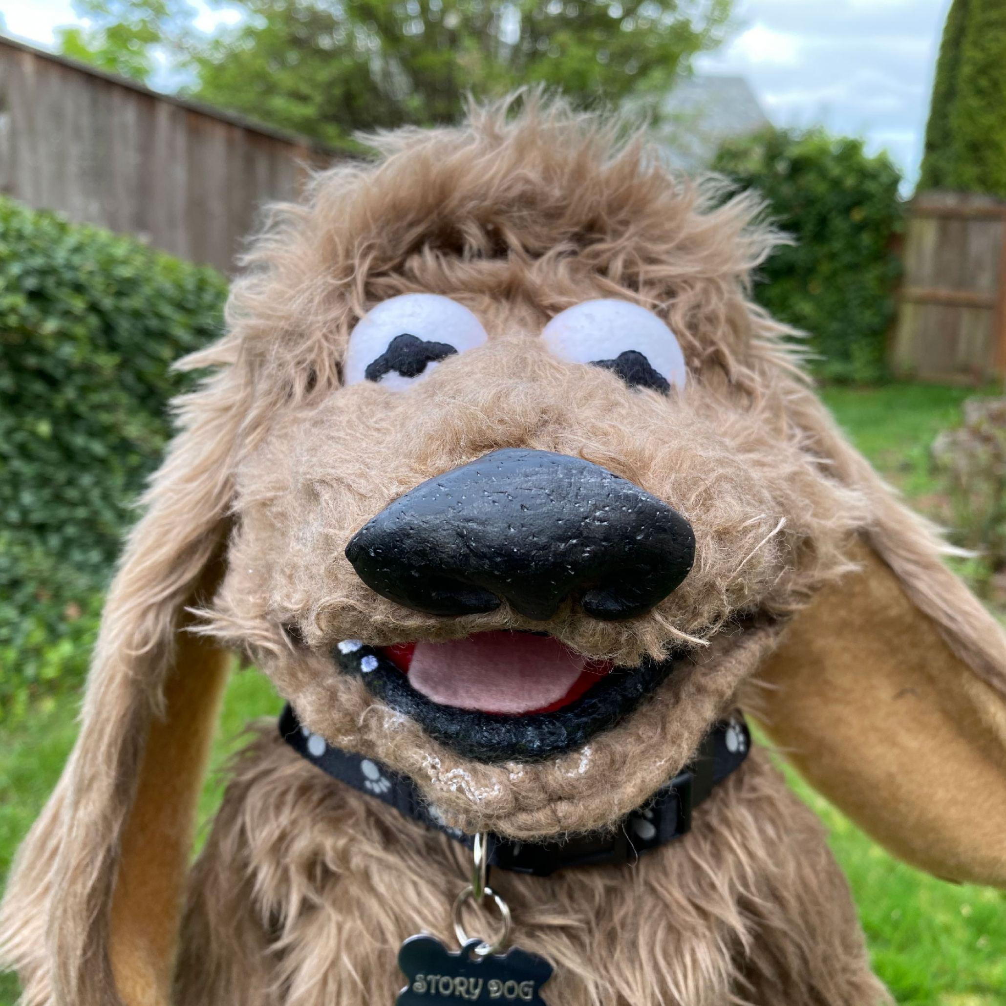Storydog Face 2200px