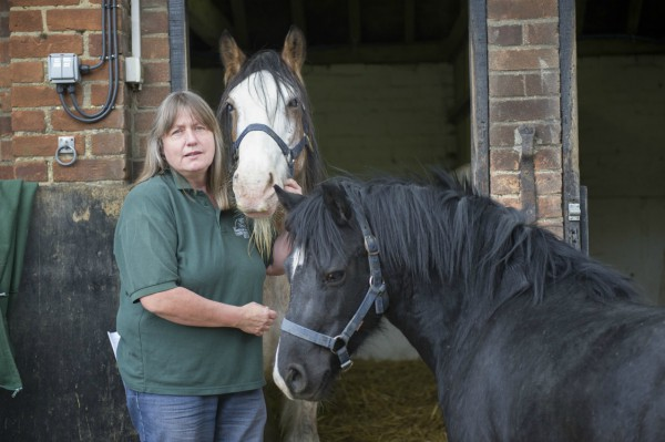 Sue Burton with rescued blind and pregnant mares