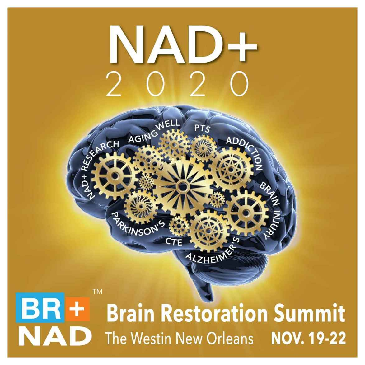 2020 NAD+ Brain Restoration Summit Logo