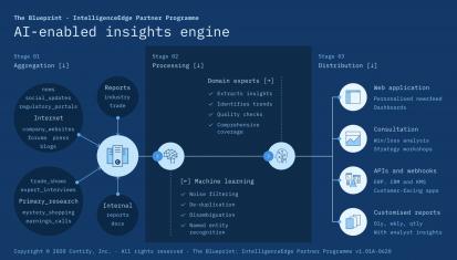 The Blueprint - IntelligenceEdge Partner Programme