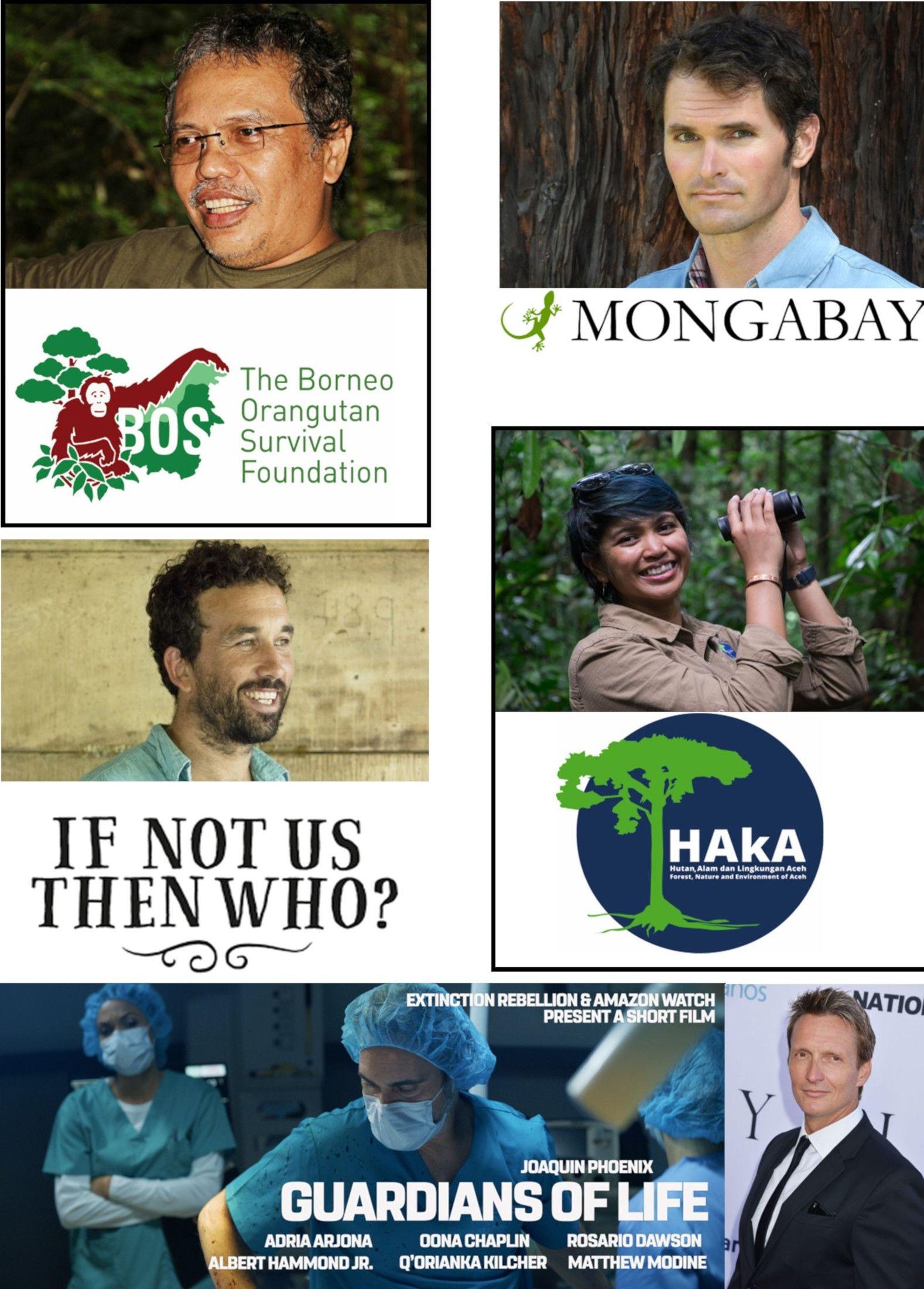 2020 Pongo Environmental Award Winners