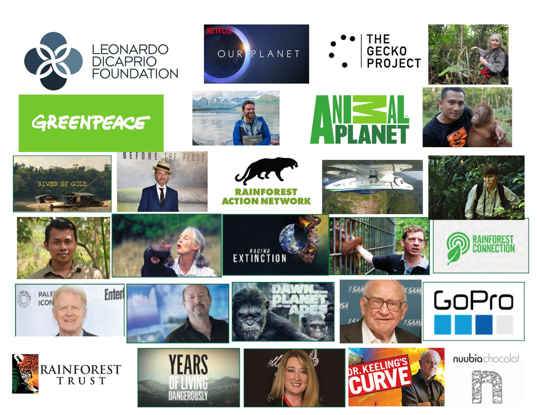 Previous Pongo Environmental Award Winners