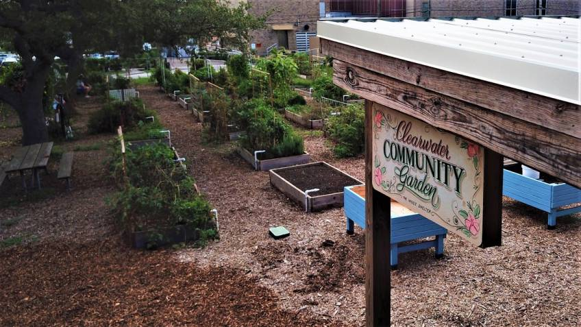 Clearwater Community Gardens Beautification