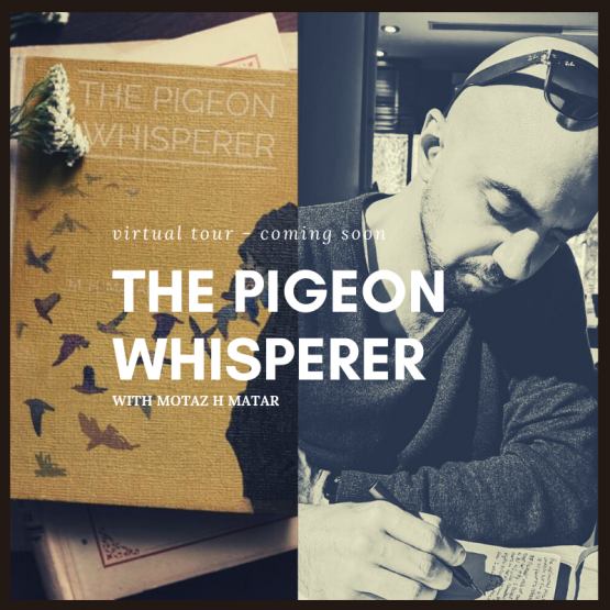 The Pigeon Whisperer Virtual Tour