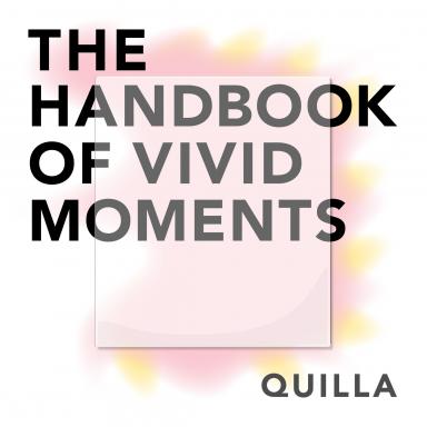 The Handbook of Vivid Moments