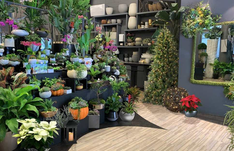 The Newly Re-Opened Flower Studio by Blondie's