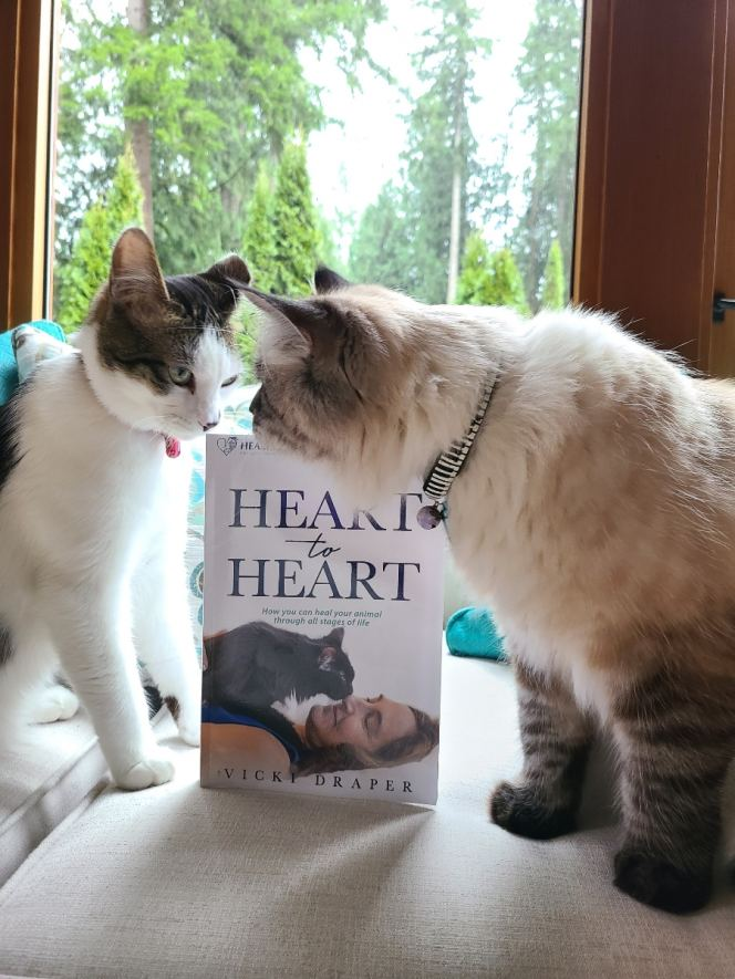 Mishka And Niles Featured in Heart To Heart