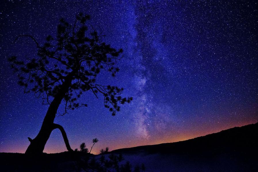 Stargaze in Cherry Springs State Park