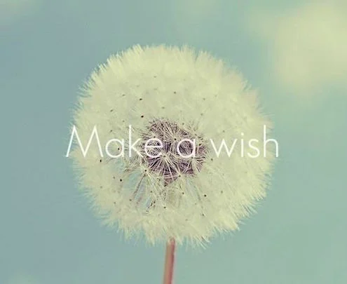 Rashika Jain Make A Wish