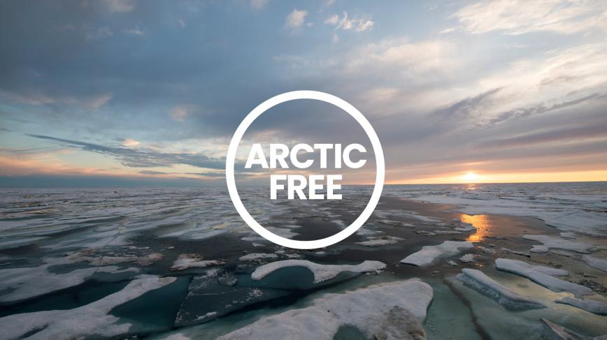 Parvati Foundation Arctic Free