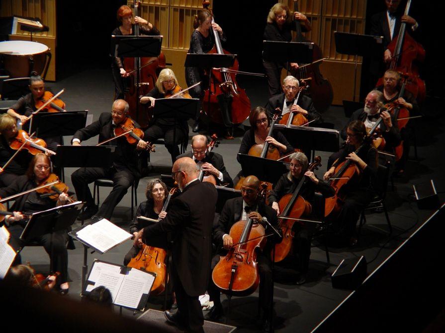 Cello, Base, Viola Sections