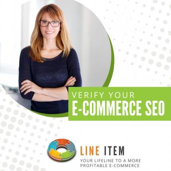 Line Item Feature: Verify Your E-Commerce SEO