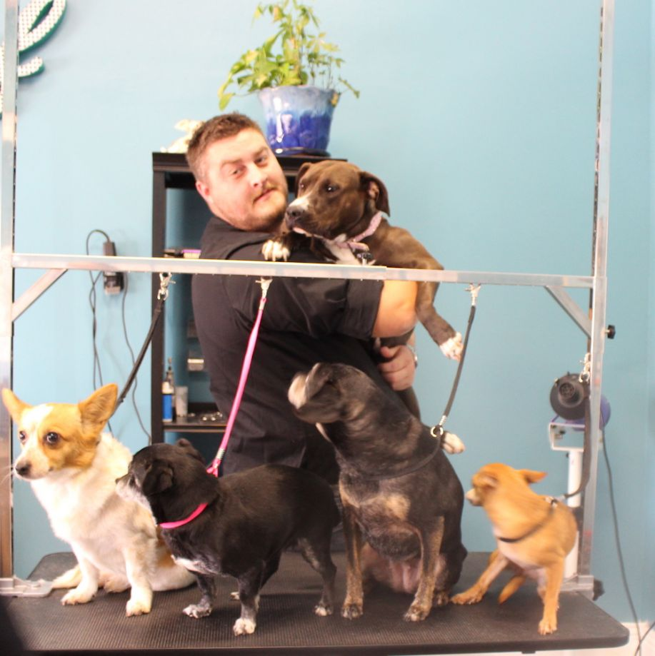 Shawn Crosby and his five dogs at Bubble Pup.