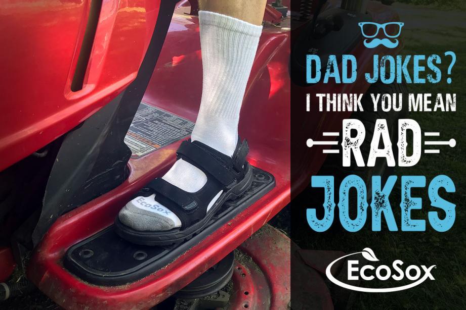Ecosox Dad Jokes