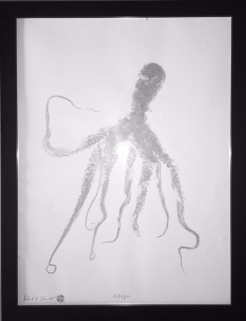 PaperFin - Octopus