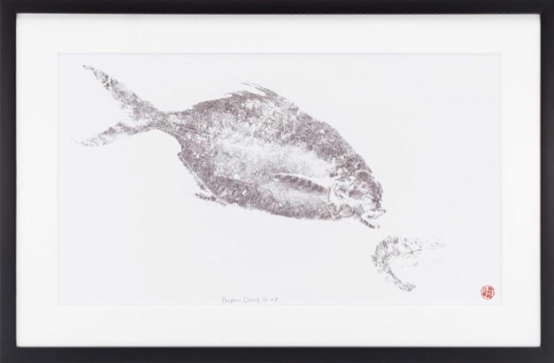 PaperFin - Pompano Chasing Shrimp