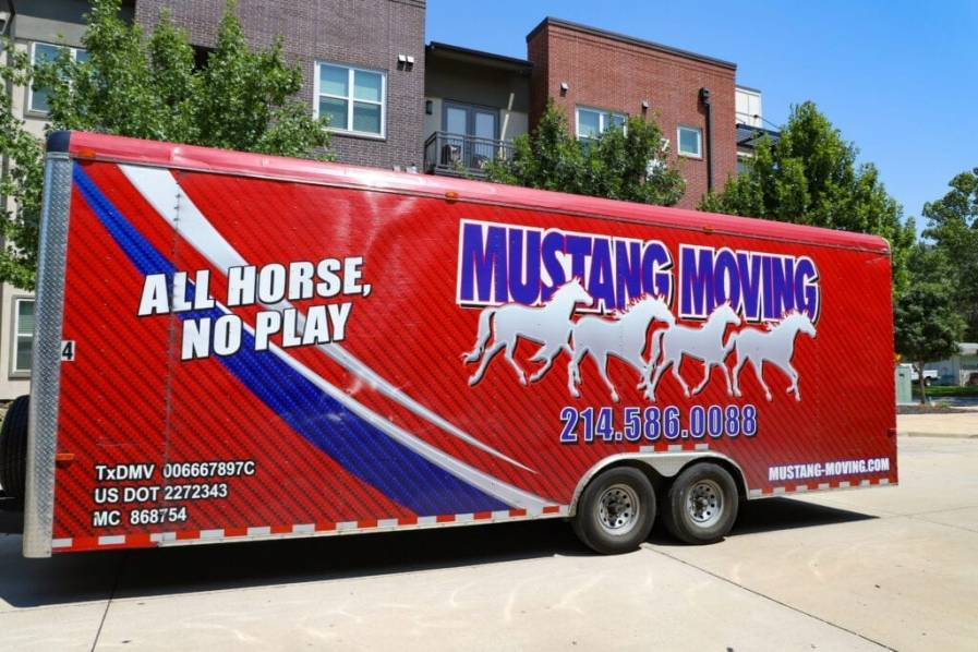 Mustang Moving 73 Of 117 1024x683 1