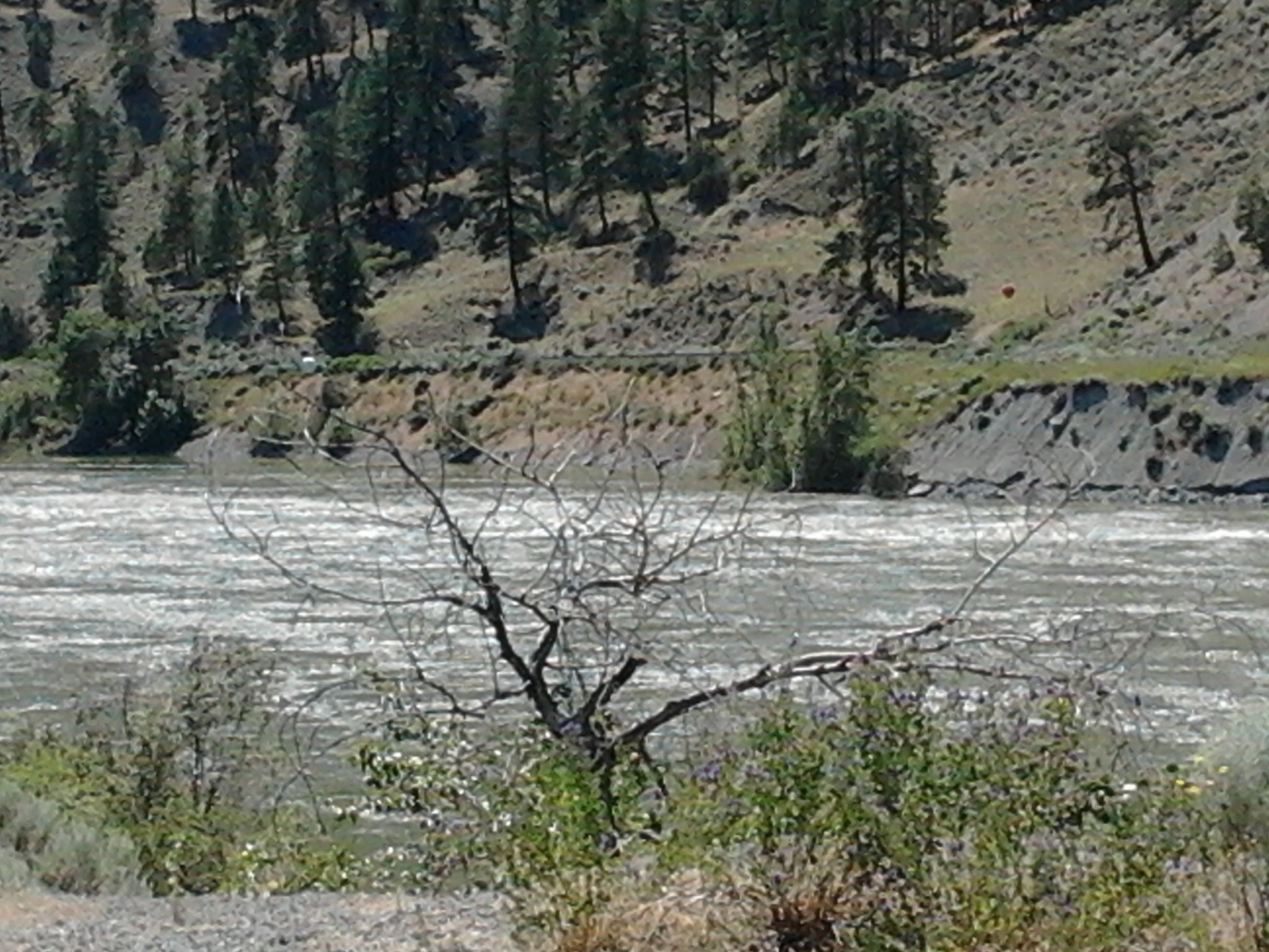 Image of Fraser Canyon Near Lytton BC Before Fires