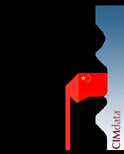 2021 CIMdata China Market Analysis Report