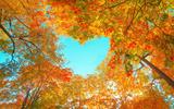 Shutterstock 1816260440