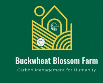 Logo Buckwheat Blossom Farm
